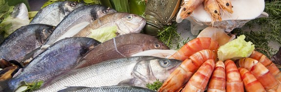 Main bigstock fresh fish 499641231 1280x420